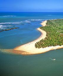 A majestic beach in the Bahia State of Brazil